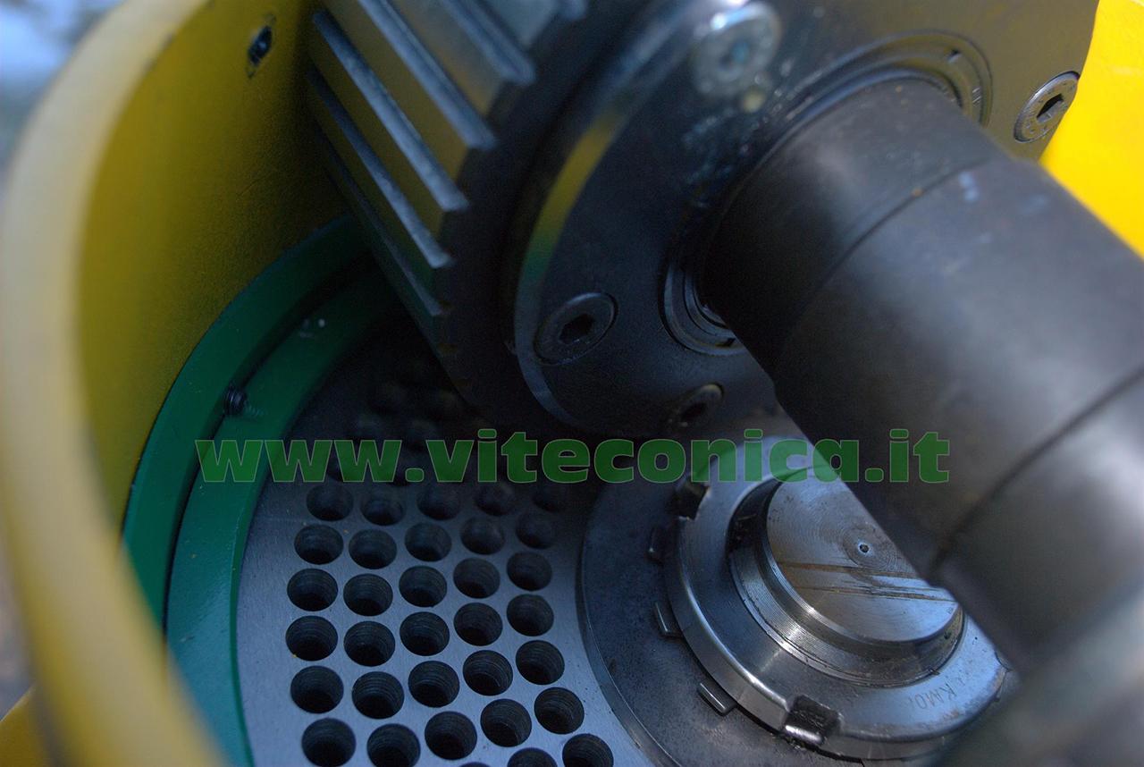 Gruppo-meccanico-per-pellettatrice-3